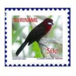 DG Suriname Stamps 3